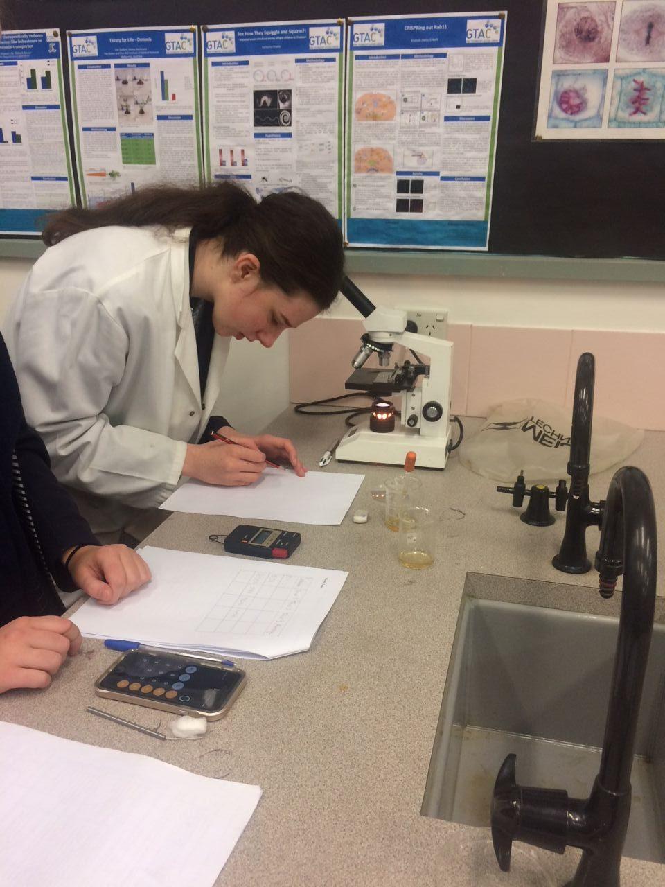 VCE Biology classes start their Independent Investigations